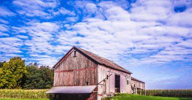 Farm Weekly Links