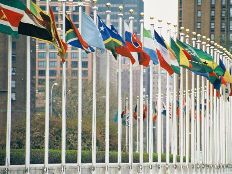UN member flags. Photo courtesy of Aotearoa.